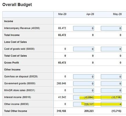 Xero budget